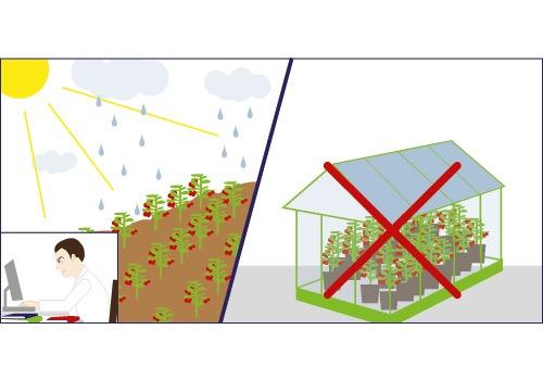 Illustration: Klimaschutz bei FRoSTA (2)
